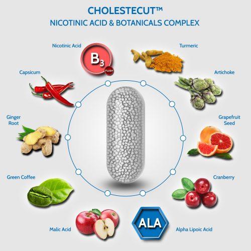 Cholestecut B3 Niacin botanical complex cholesterol supplement with Cranberry Grapefruit Green Coffee